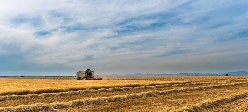 Oddłużanie gospodarstw rolnych